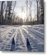Winter Sport X-country Skis In Sunny Forest Tracks Metal Print