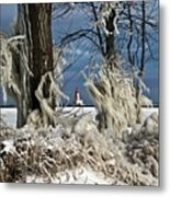 Winter Storm Ashley 2015 #2 Metal Print
