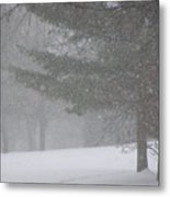 Winter Storm In Bush Metal Print by Richard Mitchell