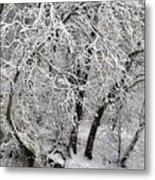 Winter Storm Skylar Metal Print