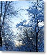 Winter Sunrise II Metal Print