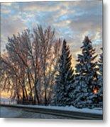 Winter Colors. Metal Print