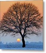 Winter Sunset With Silhouette Of Tree Metal Print by Pierre Hanquin Photographie