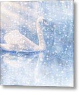 Winter Swan Metal Print