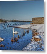 Winter Swan Lake Metal Print