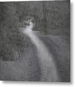 Winter Trail 2016-2 Metal Print