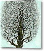 Winter Tree 2009 Metal Print