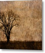 Winter Trees In The Bottomland 1 Metal Print