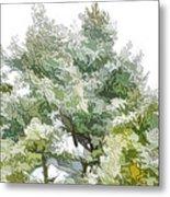 Winter Trees On Snow 1 Metal Print