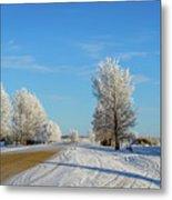 Winter In Saskatchewan Metal Print