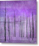 Winter Violet  7913violet Metal Print