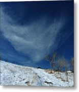 Winter Walk Metal Print