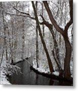 Winter Walk In The Woods Metal Print