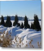 Winter Waves Metal Print