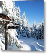 winter way in the Upper Harz Metal Print