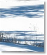 winter weeds SCN M 80 Metal Print