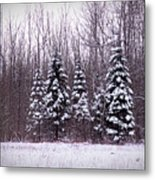 Winter White Magic Metal Print