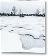 Winter Wonderland Bw Metal Print