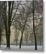Winter Wonderland Metal Print