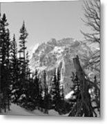 Winter Wonders 3 Metal Print