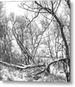 Winter Woods On A Stormy Day 2 Bw Metal Print