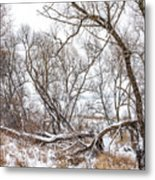 Winter Woods On A Stormy Day 2 Metal Print