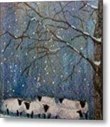 Winter Wool  Metal Print