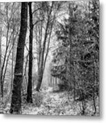 Winteress Metal Print