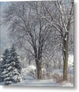 Winter's Best Metal Print