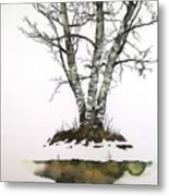 Winters Birch Metal Print
