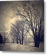Winter's Dark Thoughts Metal Print