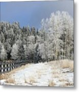 Winters Day In The Mountains Metal Print