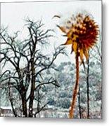Winters Field Metal Print