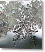 Winter's Glory Metal Print