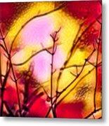Winter's Glow Metal Print