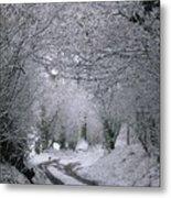 Winters Lane Metal Print