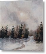 Winters Sunset Metal Print