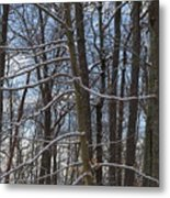 Winter's Touch Metal Print