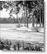 Winter's Tropical Landscape Metal Print