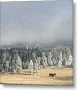 Wintery Mountain Ranch Metal Print