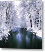 Wintry White Metal Print