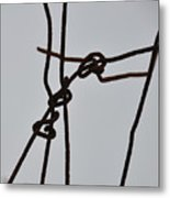 Wire And Snow Metal Print