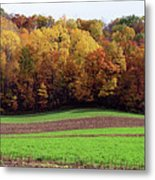 Wisconsin Colors Metal Print