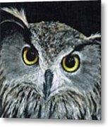 Wise Eyes II Metal Print