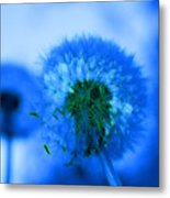 Wish Away The Blues Metal Print