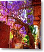 Wisteria Canopy In Bisbee Arizona Metal Print