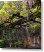 Wisteria Flowers Blooming On Trellis Over Water Fountain Metal Print