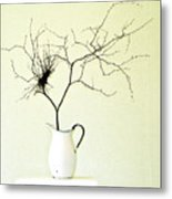 Witches' Broom Metal Print