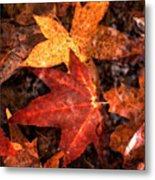 With Love - Autumn Pond Metal Print