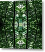 Within Another Dimension  Metal Print